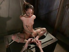 Kristina likes to sit comfortable and that babe was a fucking whore with no respect until this fellow putted his paws on her. Now she's all fastened up has clamps on her nipps that are pulling those small tits and a ball is used to gag her pretty mouth. Kristina sits there and gets whipped and punished, that babe deserves it.