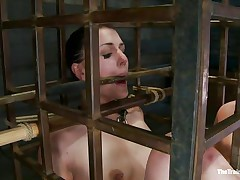 She was a bad angel and they had to put her in a cage and reeducate her. Now this babe is receiving what this babe deserves, a hard spank and some well deserved humiliation. Of course her bald cum asking cunt is not to be neglected and the executor uses a fake penis to taunt her a bit. Want to this babe the rest of it?
